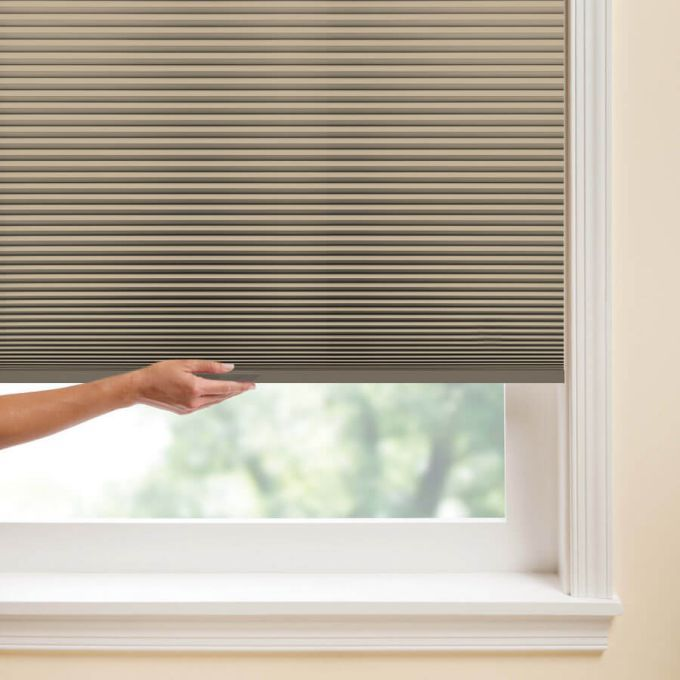 """3/4"""" Single Cell Value Plus Blackout Honeycomb Shades 5682"""