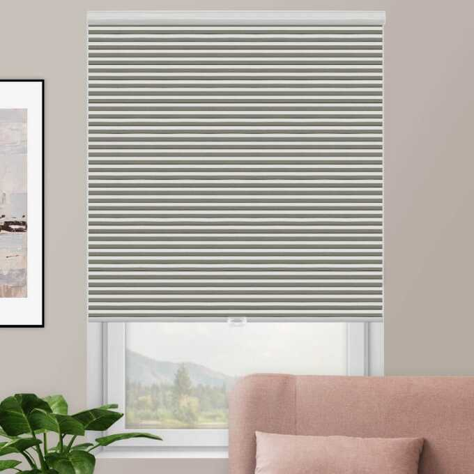 Designer Double Cell Blackout Honeycomb Shades 4367