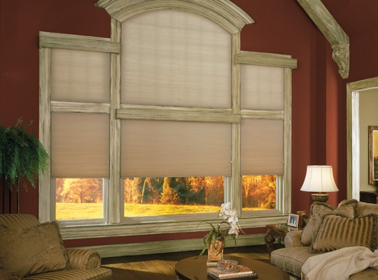 Specialty Cell Shade Arch Window Treatments